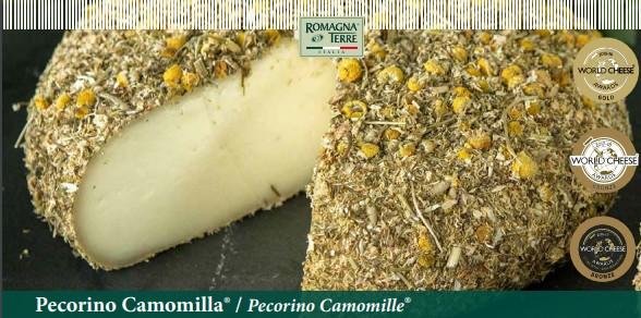 Pecorino Camomilla