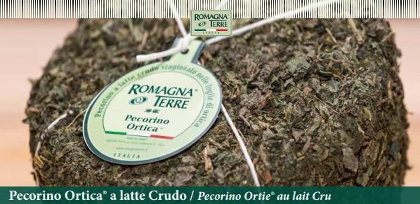 Pecorino Ortica a latte Crudo